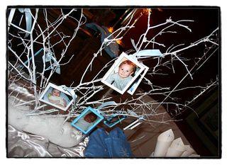 Keaton_tree
