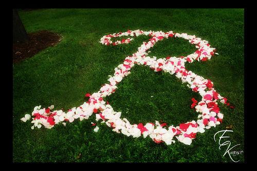 B_petals2